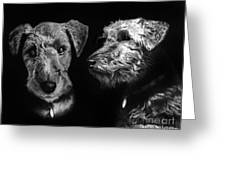 Keeper The Welsh Terrier Greeting Card