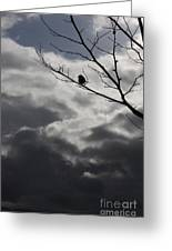 Keeping Above The Storm Greeting Card