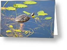 Keeping His Head Above Water Greeting Card