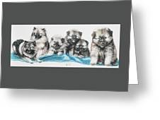 Keeshond Puppies Greeting Card