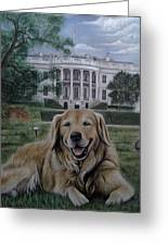Kelli On The White House Lawn Greeting Card