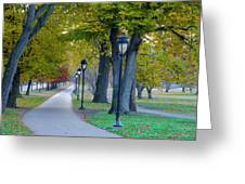 Kelly Drive In Autumn Greeting Card