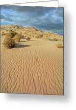 Kelso Dunes Mojave Preserve Portrait Greeting Card