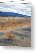 Kelso Dunes Winter Greeting Card
