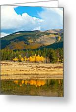 Kenosha Pass Aspens 4 Greeting Card