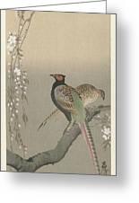 kersenbloesem Ohara Koson Greeting Card