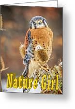 Kestrel Nature Wear Greeting Card