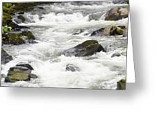 Ketchikan Creek Of Creek Street Detail Greeting Card