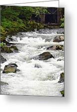 Ketchikan Creek Of Creek Street Fame Greeting Card