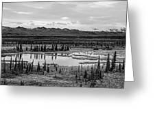Kettle Pond And The Alaska Range Greeting Card