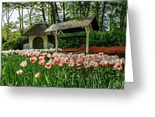 Keukenhof Gardens Greeting Card