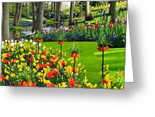 Keukenhof Ornamental Garden. Greeting Card