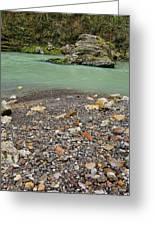 Khosty River. Greeting Card