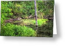 Kill Creek 8388 Greeting Card