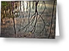 Kill Creek 8394 Greeting Card