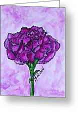 Kimmy's Carnation Greeting Card