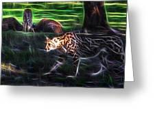 King Cheetah And 3 Cubs Greeting Card
