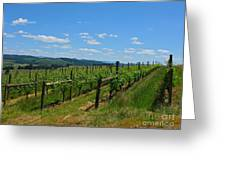 King Estate Vineyard Greeting Card