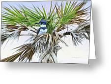 King Fisher Palm Greeting Card