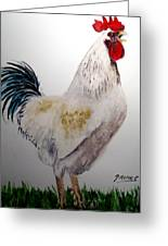 King Of The Coop Greeting Card