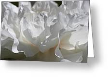 King Of The Flowers Greeting Card