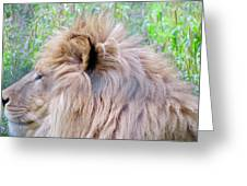 King Of The Jungle Profile  Greeting Card
