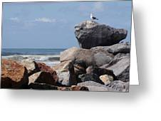 King Of The Rocks Greeting Card