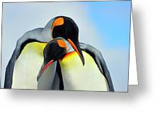 King Penguin Greeting Card by Tony Beck