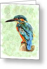 Kingfisher Blue Greeting Card
