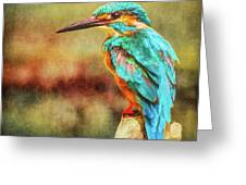 Kingfisher's Perch 2 Greeting Card
