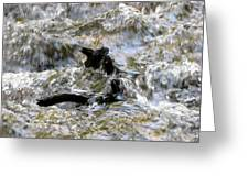 Kings River Impressions I Greeting Card