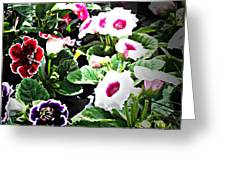 Kingwood Center 3 Greeting Card