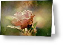 Kissed By A Rose Greeting Card
