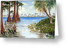Kissimee River Shore Greeting Card