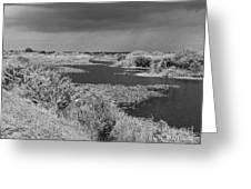 Kissimmee Storm Greeting Card