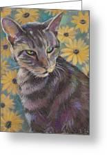 Kit Cat Greeting Card