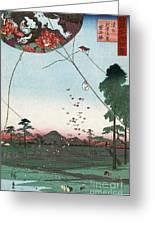 Kite Flying Greeting Card