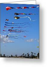 Kite Season Greeting Card