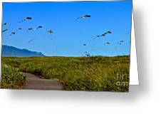 Kites Greeting Card by Robert Bales