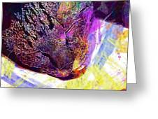 Kitten Cat Sleep Peaceful Mood  Greeting Card