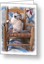 Kitten In The Rocker Greeting Card