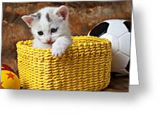 Kitten In Yellow Basket Greeting Card by Garry Gay