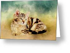 Kitten - Painting Greeting Card