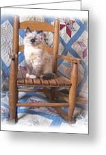 Kitten, Quilt And Rocker Greeting Card