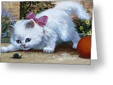 Kitten With Snail And Ball Greeting Card