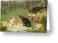 Kittens Playing Greeting Card by Ewald Honnef