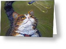 Kitty And The Dragonfly Close-up Greeting Card