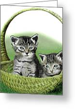 Kitty Caddy Greeting Card