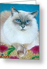Kitty Coiffure Greeting Card