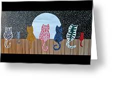 Kitty Moon Rise Greeting Card